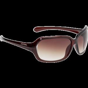 ALPINA A70 Brown Transparent női napszemüveg
